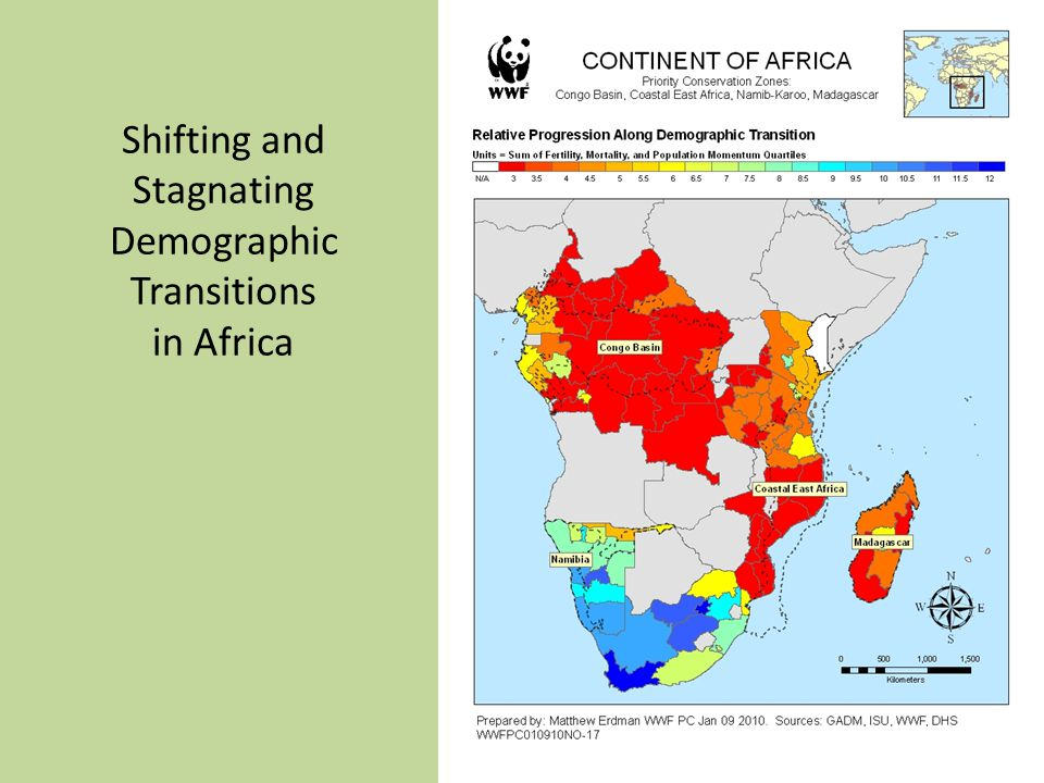 Shifting and Stagnating Demographic Transitions in Africa