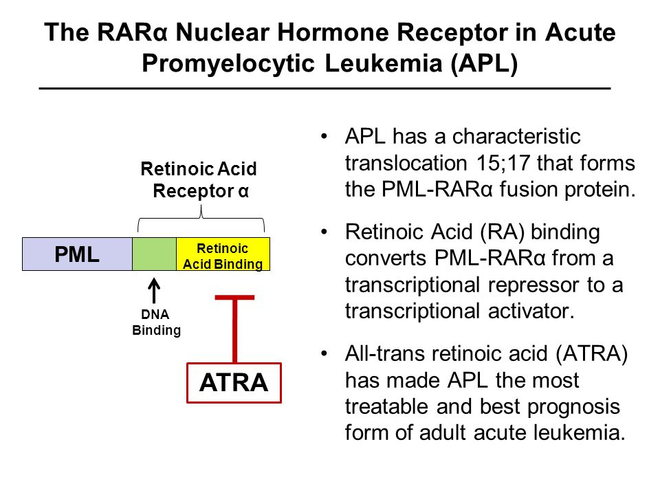 The RARα Nuclear Hormone Receptor in Acute Promyelocytic Leukemia (APL) APL has a characteristic translocation 15;17 that forms the PML-RARα fusion protein.