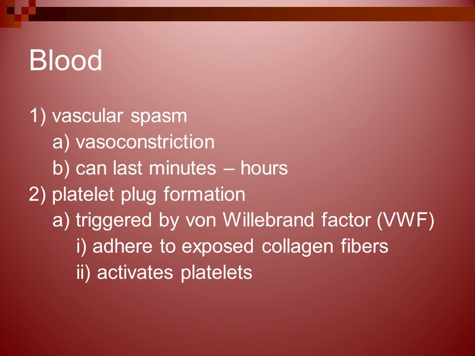 Blood 1) vascular spasm a) vasoconstriction b) can last minutes – hours 2) platelet plug formation a) triggered by von Willebrand factor (VWF) i) adhere to exposed collagen fibers ii) activates platelets