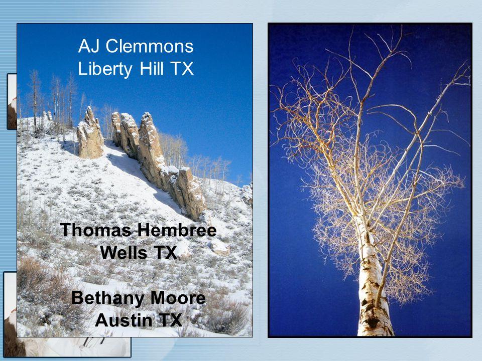 AJ Clemmons Liberty Hill TX Thomas Hembree Wells TX Bethany Moore Austin TX