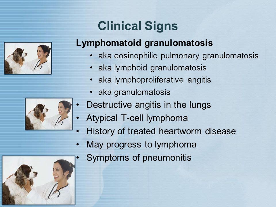 Clinical Signs Lymphomatoid granulomatosis aka eosinophilic pulmonary granulomatosis aka lymphoid granulomatosis aka lymphoproliferative angitis aka g
