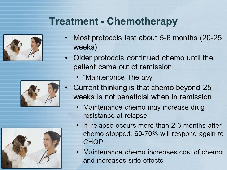 """Treatment - Chemotherapy Most protocols last about 5-6 months (20-25 weeks) Older protocols continued chemo until the patient came out of remission """"M"""