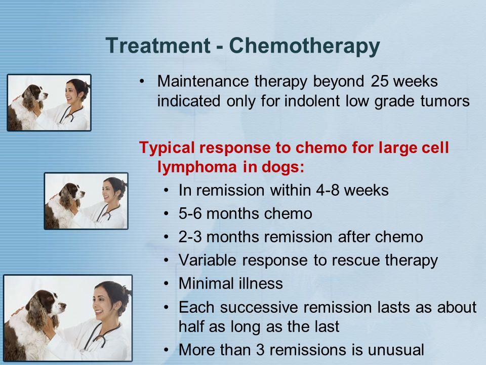 Treatment - Chemotherapy Maintenance therapy beyond 25 weeks indicated only for indolent low grade tumors Typical response to chemo for large cell lym