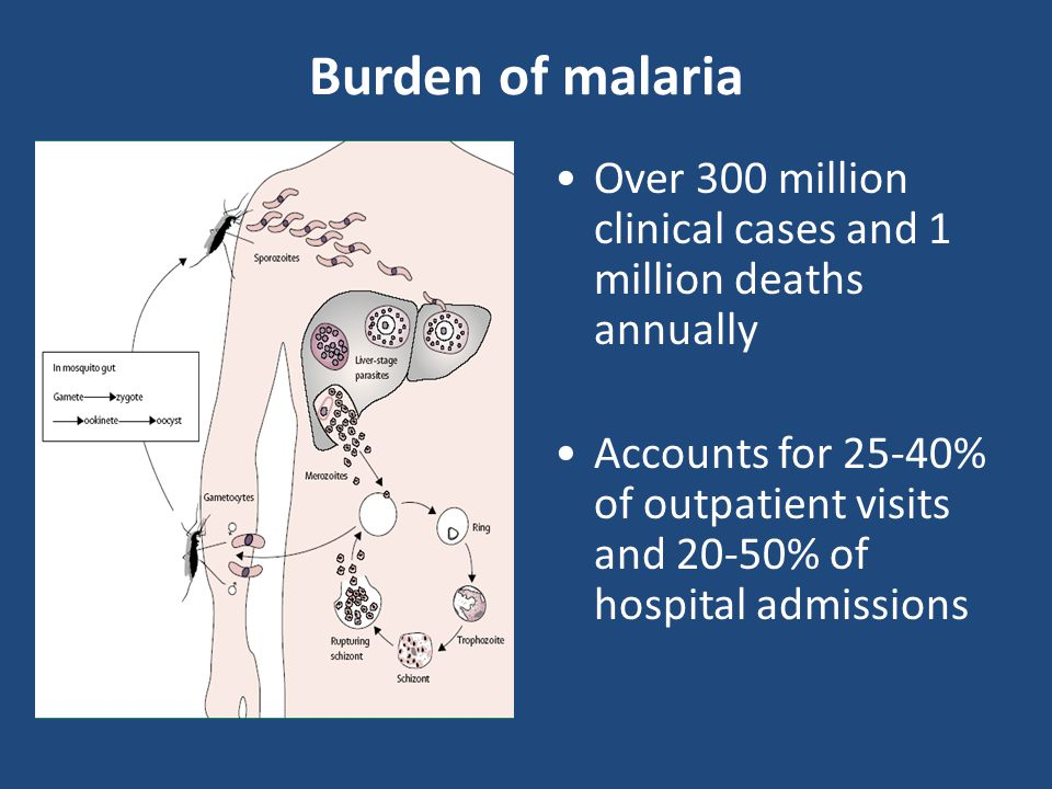Burden of malaria Over 300 million clinical cases and 1 million deaths annually Accounts for 25-40% of outpatient visits and 20-50% of hospital admiss