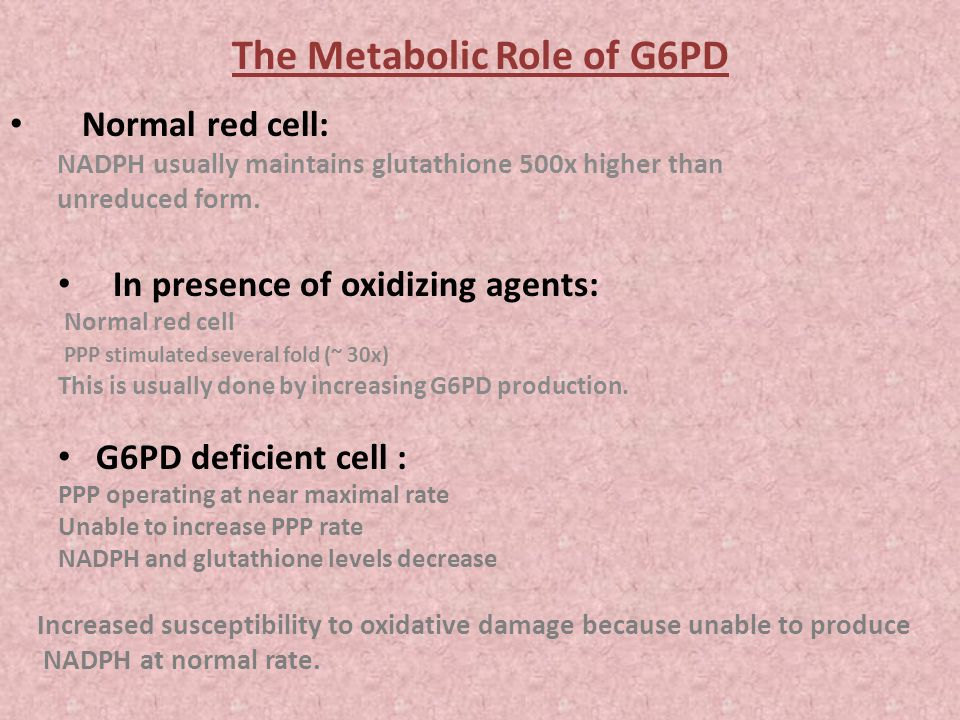 The Metabolic Role of G6PD Normal red cell: NADPH usually maintains glutathione 500x higher than unreduced form.