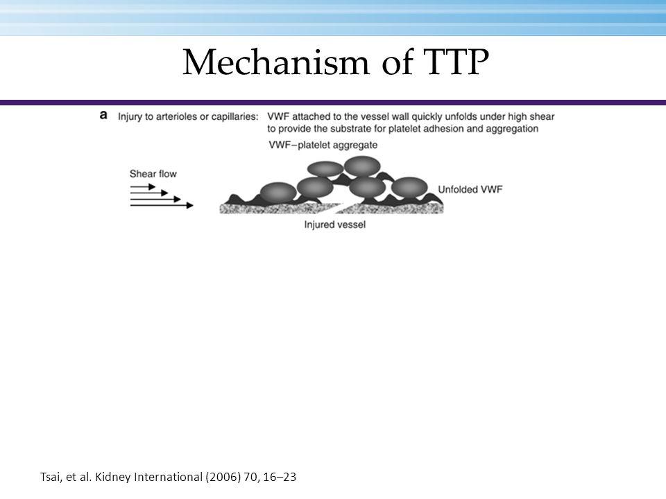 Mechanism of TTP Tsai, et al. Kidney International (2006) 70, 16–23