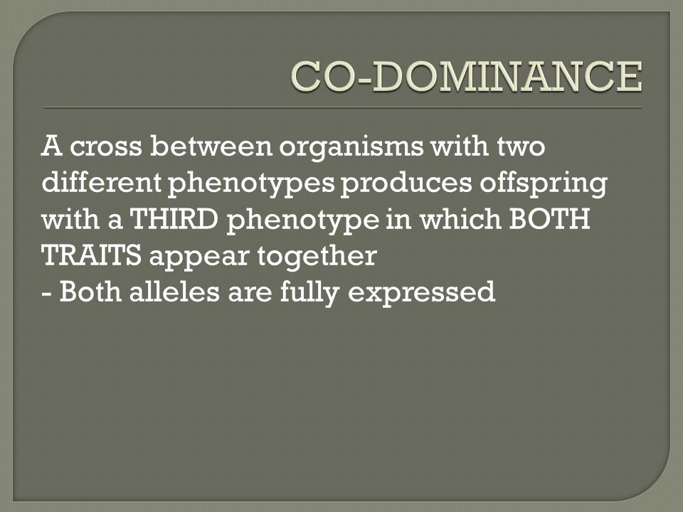 A cross between organisms with two different phenotypes produces offspring with a THIRD phenotype in which BOTH TRAITS appear together - Both alleles are fully expressed