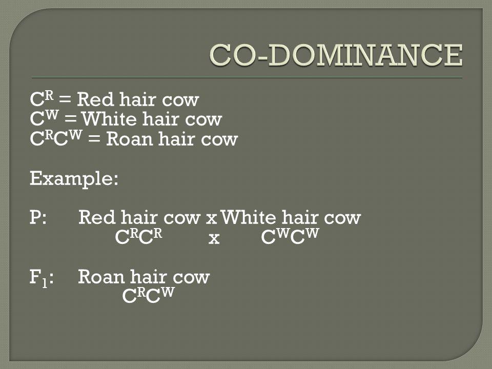C R = Red hair cow C W = White hair cow C R C W = Roan hair cow Example: P:Red hair cow x White hair cow C R C R x C W C W F 1 : Roan hair cow C R C W