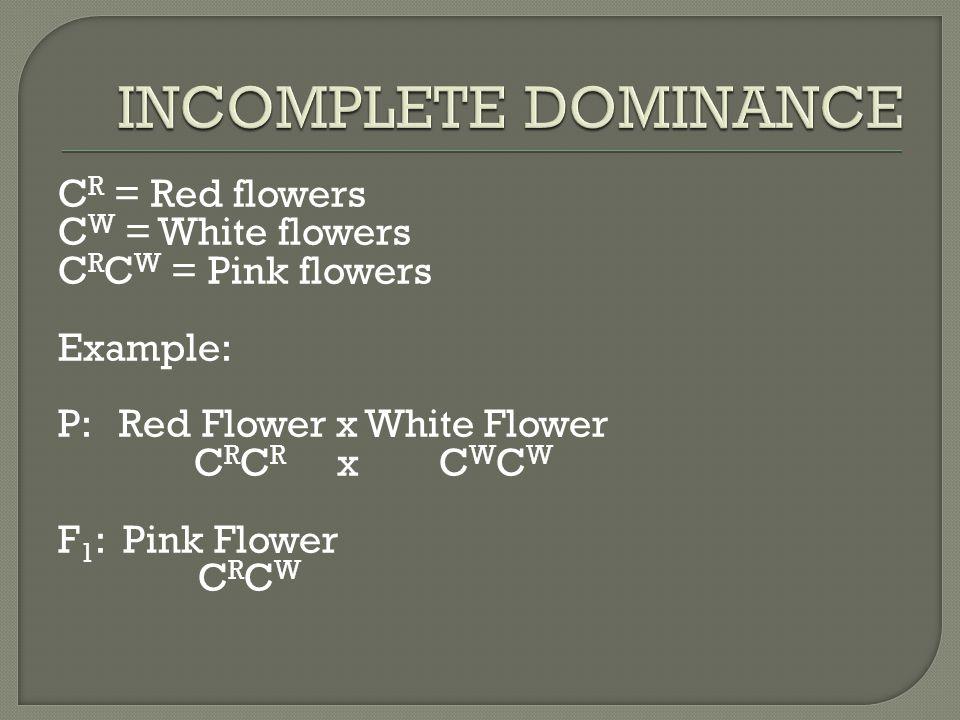 C R = Red flowers C W = White flowers C R C W = Pink flowers Example: P: Red Flower x White Flower C R C R x C W C W F 1 : Pink Flower C R C W