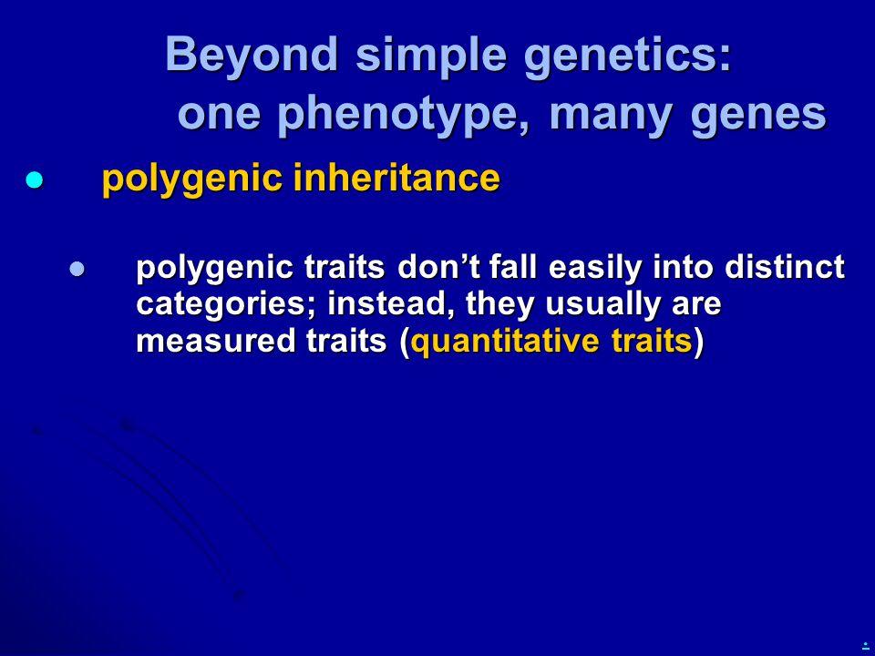 . Beyond simple genetics: one phenotype, many genes polygenic inheritance polygenic inheritance polygenic traits don't fall easily into distinct categ