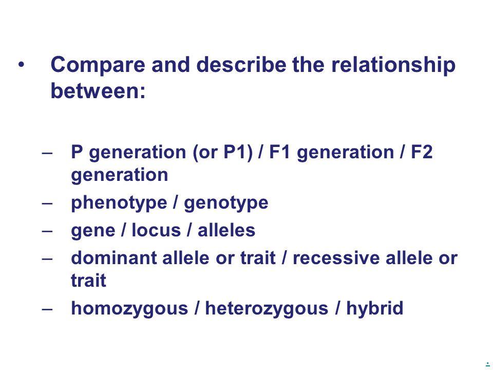 . Compare and describe the relationship between: –P generation (or P1) / F1 generation / F2 generation –phenotype / genotype –gene / locus / alleles –dominant allele or trait / recessive allele or trait –homozygous / heterozygous / hybrid
