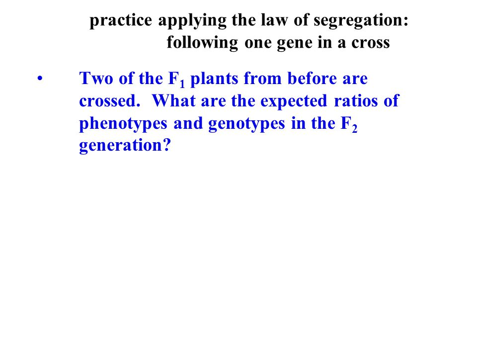 Two of the F 1 plants from before are crossed. What are the expected ratios of phenotypes and genotypes in the F 2 generation? practice applying the l