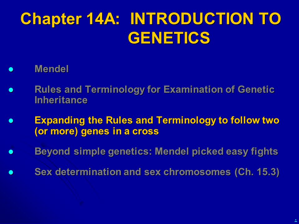 Chapter 14A: INTRODUCTION TO GENETICS Mendel Mendel Rules and Terminology for Examination of Genetic Inheritance Rules and Terminology for Examination of Genetic Inheritance Expanding the Rules and Terminology to follow two (or more) genes in a cross Expanding the Rules and Terminology to follow two (or more) genes in a cross Beyond simple genetics: Mendel picked easy fights Beyond simple genetics: Mendel picked easy fights Sex determination and sex chromosomes (Ch.
