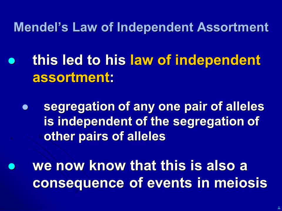 . Mendel's Law of Independent Assortment this led to his law of independent assortment: this led to his law of independent assortment: segregation of any one pair of alleles is independent of the segregation of other pairs of alleles segregation of any one pair of alleles is independent of the segregation of other pairs of alleles we now know that this is also a consequence of events in meiosis we now know that this is also a consequence of events in meiosis