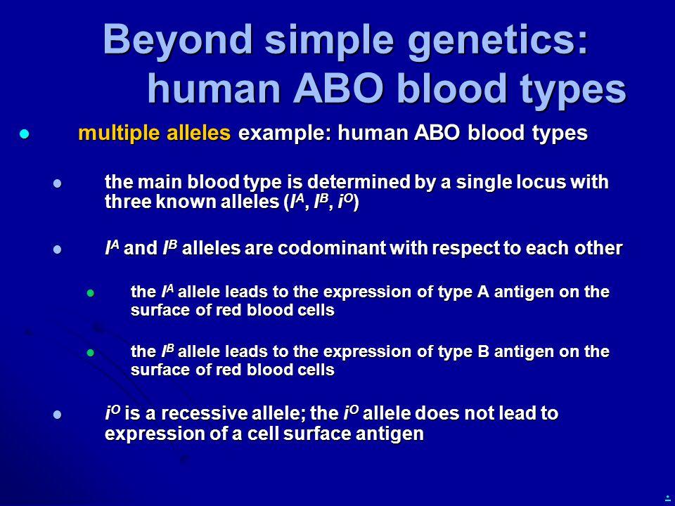 . Beyond simple genetics: human ABO blood types multiple alleles example: human ABO blood types multiple alleles example: human ABO blood types the ma