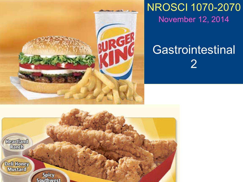 NROSCI 1070-2070 November 12, 2014 Gastrointestinal 2