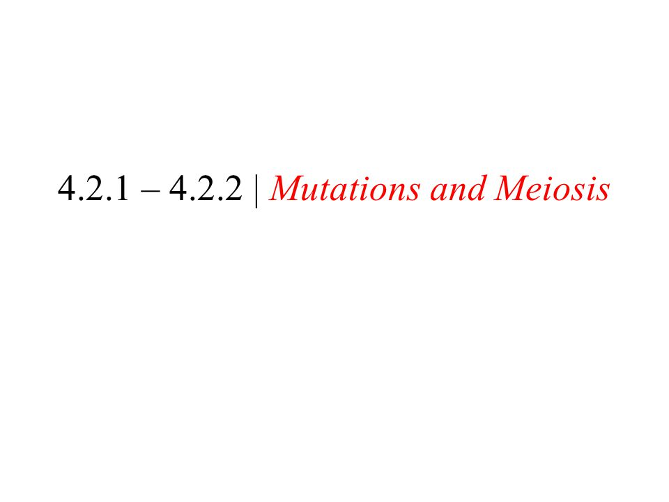 4.2.1 – 4.2.2 | Mutations and Meiosis