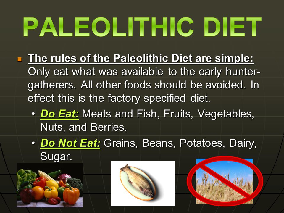 The rules of the Paleolithic Diet are simple: Only eat what was available to the early hunter- gatherers.