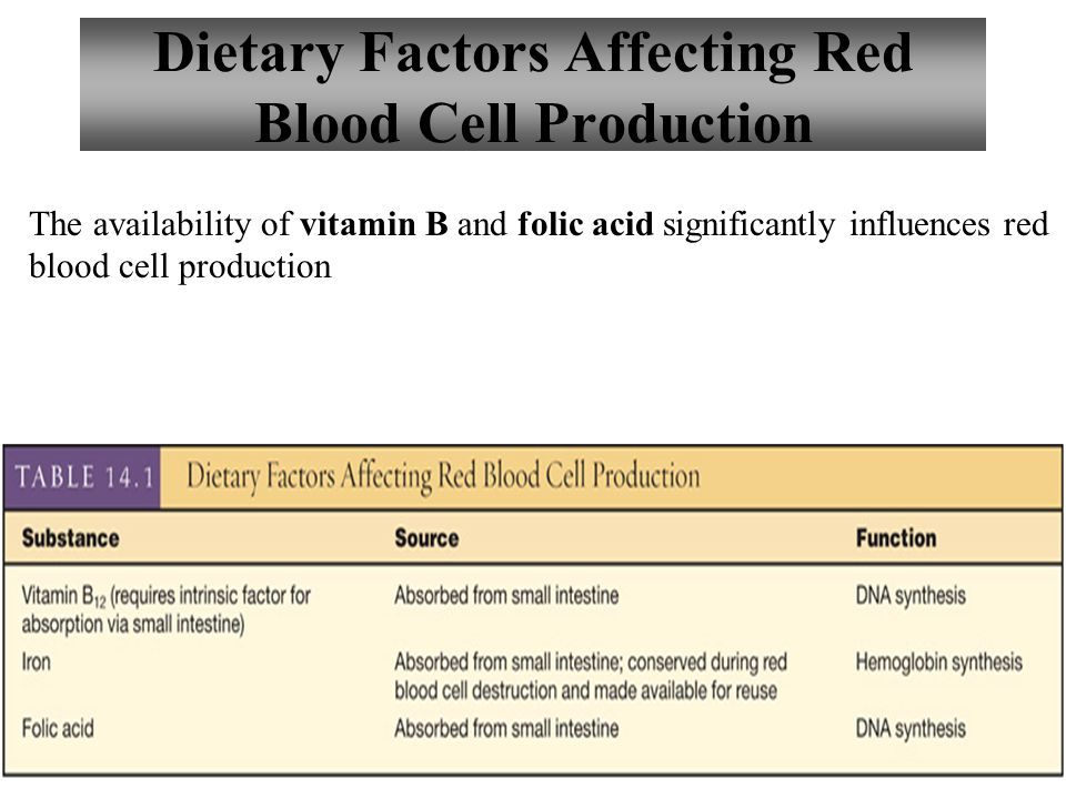 11 Dietary Factors Affecting Red Blood Cell Production The availability of vitamin B and folic acid significantly influences red blood cell production
