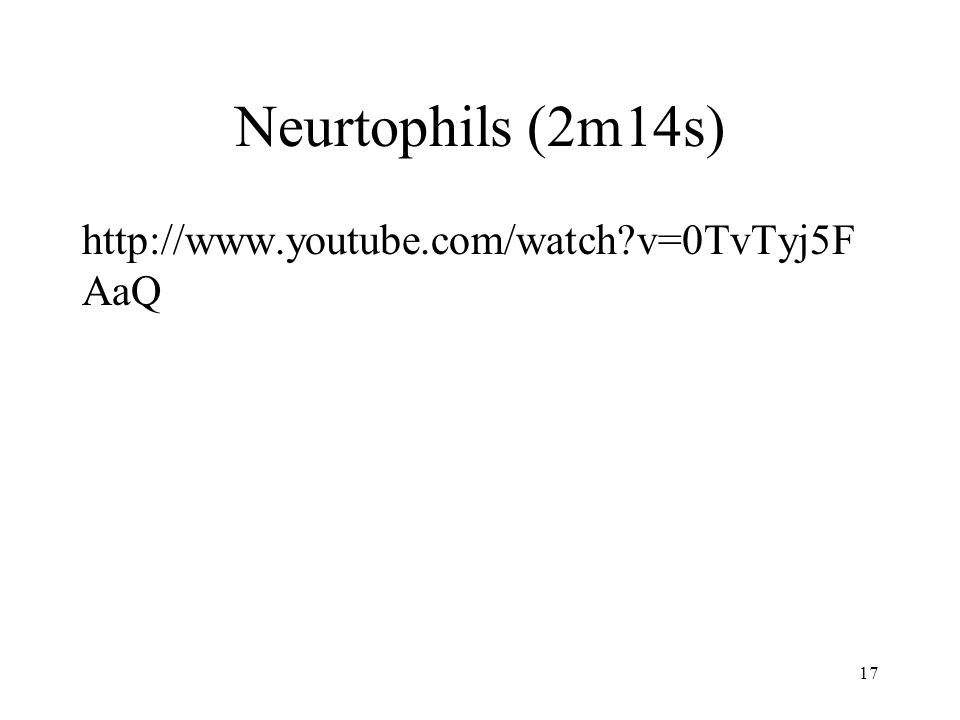 Neurtophils (2m14s) http://www.youtube.com/watch?v=0TvTyj5F AaQ 17