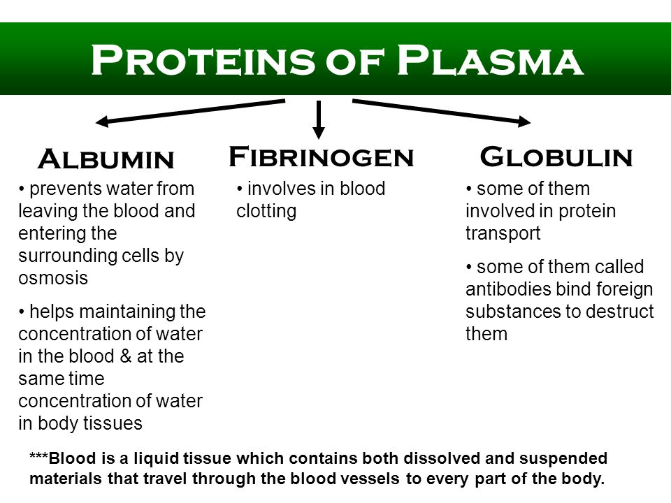 Proteins of Plasma Albumin GlobulinFibrinogen prevents water from leaving the blood and entering the surrounding cells by osmosis helps maintaining the concentration of water in the blood & at the same time concentration of water in body tissues involves in blood clotting some of them involved in protein transport some of them called antibodies bind foreign substances to destruct them ***Blood is a liquid tissue which contains both dissolved and suspended materials that travel through the blood vessels to every part of the body.