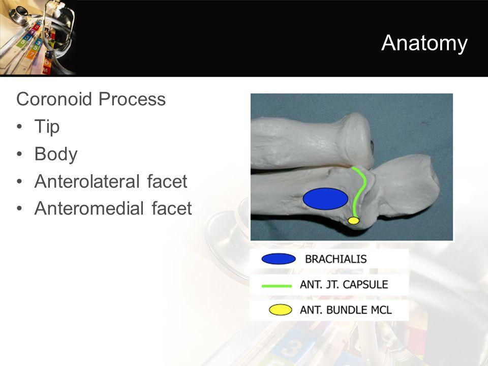 Coronoid Process Tip Body Anterolateral facet Anteromedial facet