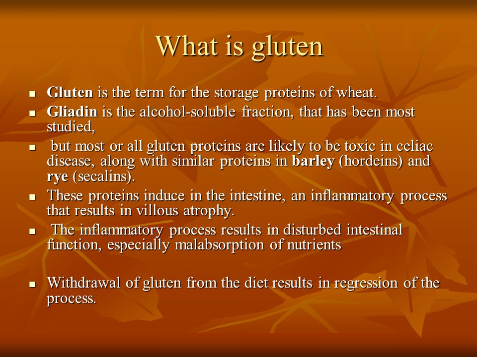 What is gluten Gluten is the term for the storage proteins of wheat. Gluten is the term for the storage proteins of wheat. Gliadin is the alcohol-solu
