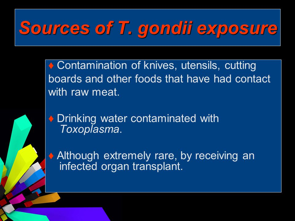 Sources of T. gondii exposure ♦ Contamination of knives, utensils, cutting boards and other foods that have had contact with raw meat. ♦ Drinking wate