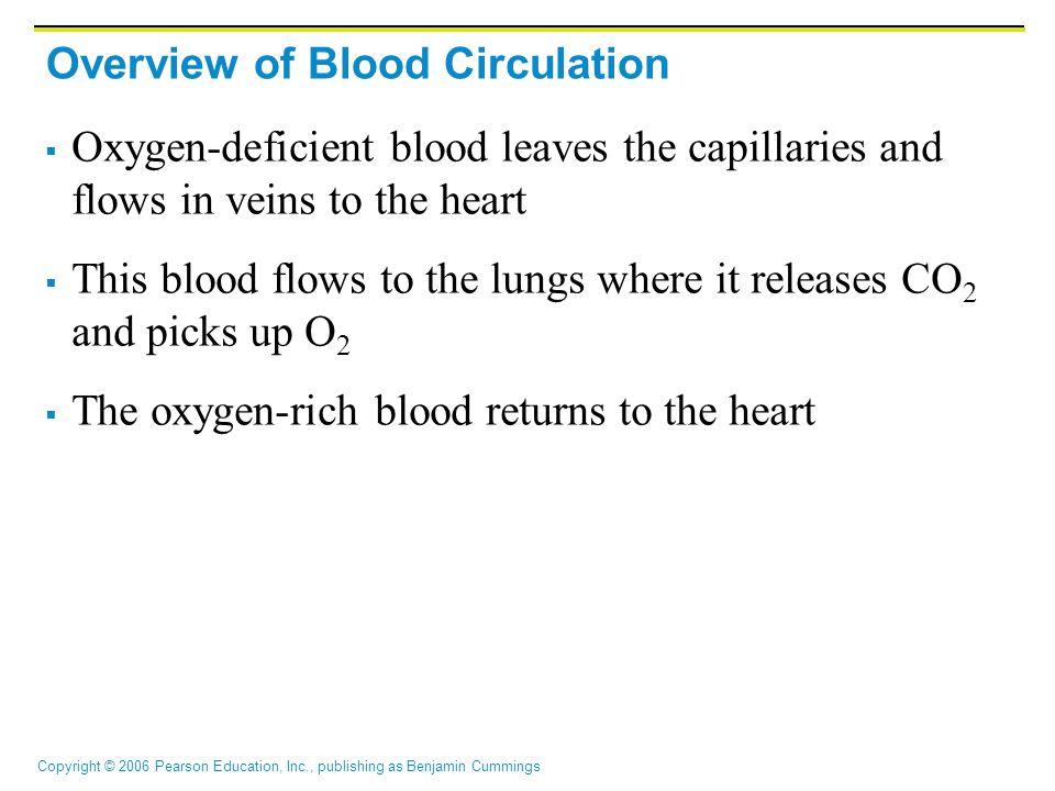 Copyright © 2006 Pearson Education, Inc., publishing as Benjamin Cummings Overview of Blood Circulation  Oxygen-deficient blood leaves the capillaries and flows in veins to the heart  This blood flows to the lungs where it releases CO 2 and picks up O 2  The oxygen-rich blood returns to the heart