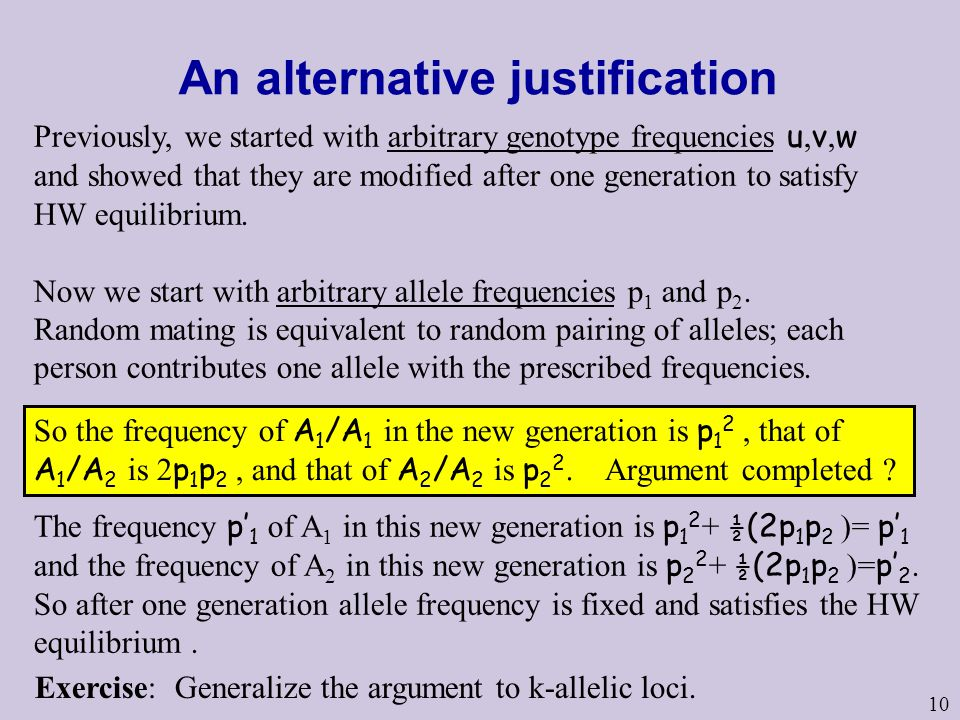 10 An alternative justification Previously, we started with arbitrary genotype frequencies u, v, w and showed that they are modified after one generat