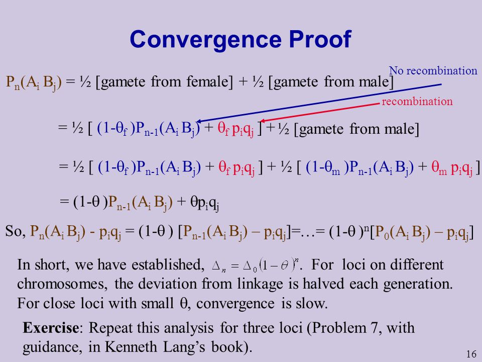 16 Convergence Proof P n (A i B j ) = ½ [gamete from female] + ½ [gamete from male] = ½ [ (1-  f )P n-1 (A i B j ) +  f p i q j ] + No recombination recombination = ½ [ (1-  f )P n-1 (A i B j ) +  f p i q j ] + ½ [ (1-  m )P n-1 (A i B j ) +  m p i q j ] = (1-  )P n-1 (A i B j ) +  p i q j So, P n (A i B j ) - p i q j = (1-  ) [P n-1 (A i B j ) – p i q j ]= …= (1-  ) n [P 0 (A i B j ) – p i q j ] Exercise: Repeat this analysis for three loci (Problem 7, with guidance, in Kenneth Lang's book).
