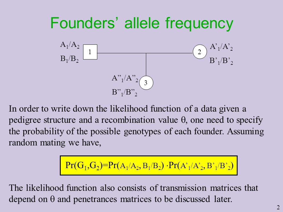 "2 Founders' allele frequency 2 3 1 A 1 /A 2 B 1 /B 2 A' 1 /A' 2 B' 1 /B' 2 A"" 1 /A"" 2 B"" 1 /B"" 2 In order to write down the likelihood function of a d"