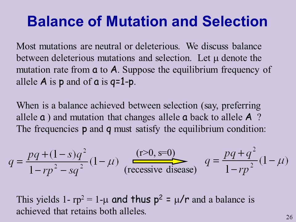 26 Balance of Mutation and Selection Most mutations are neutral or deleterious. We discuss balance between deleterious mutations and selection. Let 