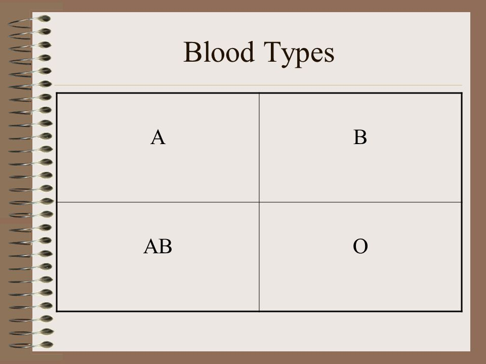 More about Blood Blood is essential to life Your blood is not the same as everyone else's Blood transfusions –Blood must match –Mixing blood could hav