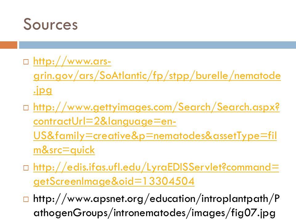 Sources  http://www.ars- grin.gov/ars/SoAtlantic/fp/stpp/burelle/nematode.jpg http://www.ars- grin.gov/ars/SoAtlantic/fp/stpp/burelle/nematode.jpg  http://www.gettyimages.com/Search/Search.aspx.
