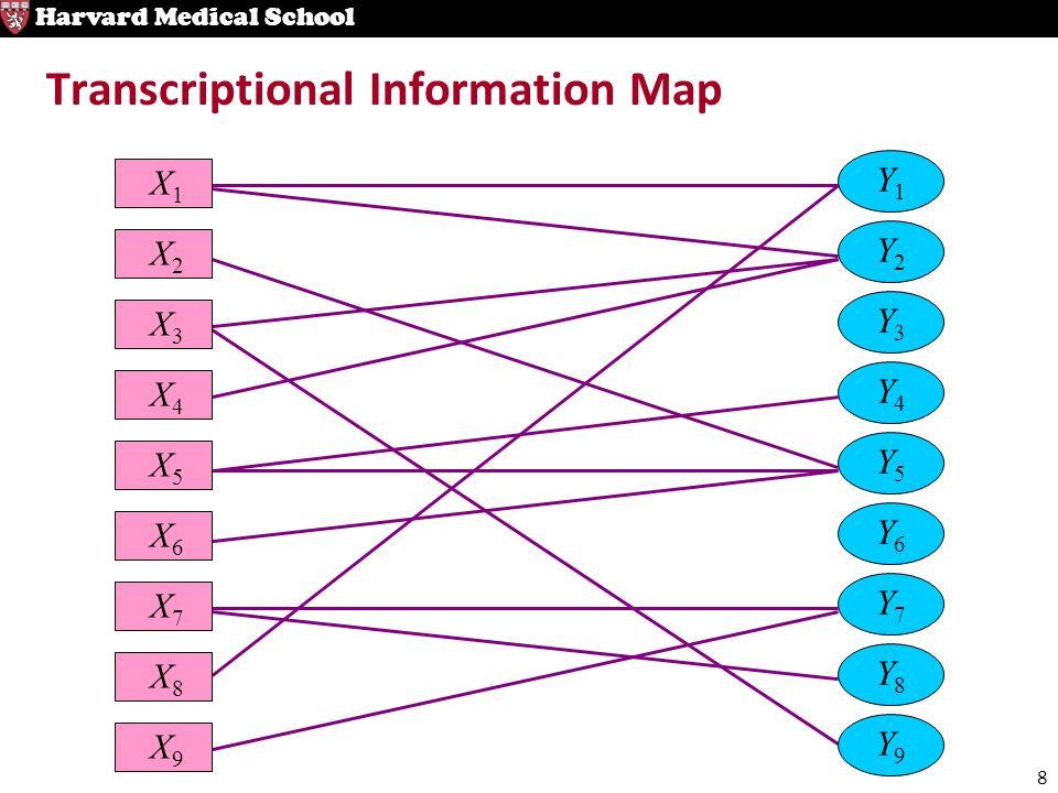8 Harvard Medical School Transcriptional Information Map X1X1 Y1Y1 X2X2 Y2Y2 X3X3 X4X4 Y4Y4 X5X5 Y5Y5 X6X6 X7X7 Y7Y7 Y8Y8 X9X9 Y9Y9 X8X8 Y3Y3 Y6Y6