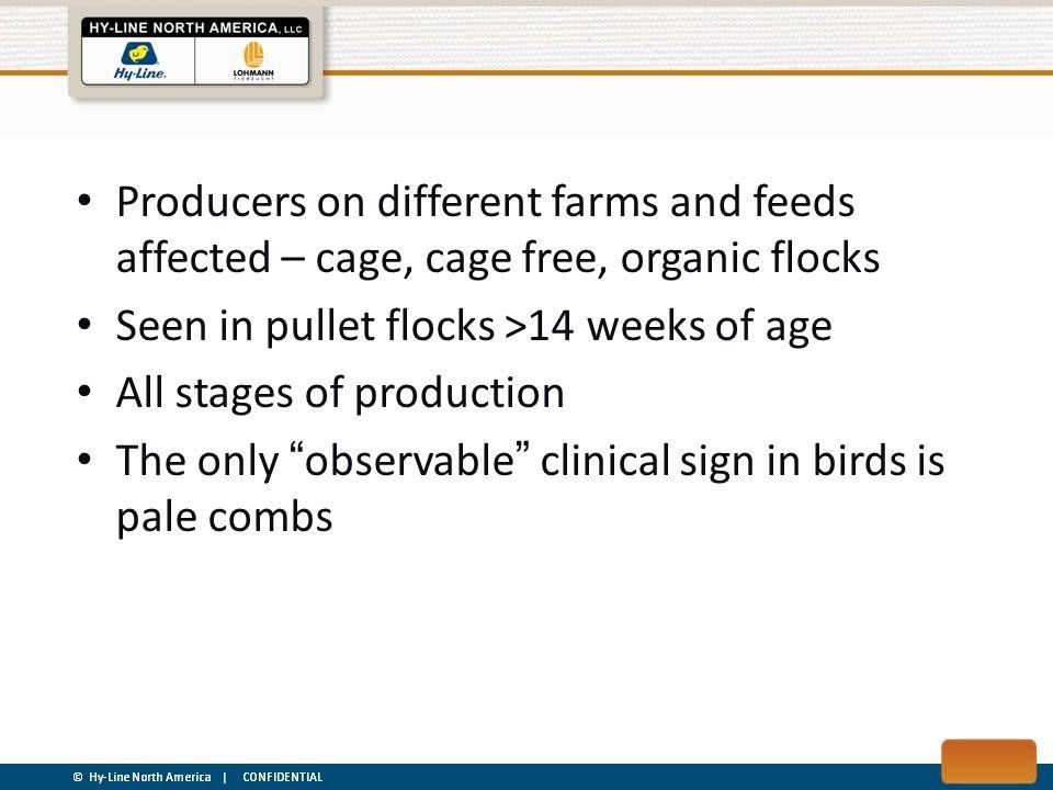 FDN in Avian Pathology Janneke G.Allaart, Naomi D.