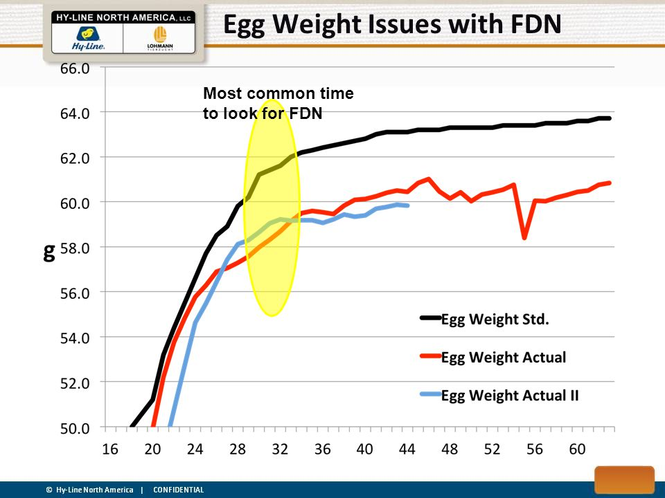 Egg Weight Issues with FDN Most common time to look for FDN