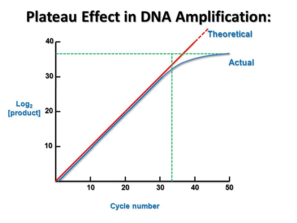 Plateau Effect in DNA Amplification: Log 2 [product] Cycle number 10 20 30 4010 20 30 40 50 Theoretical Actual