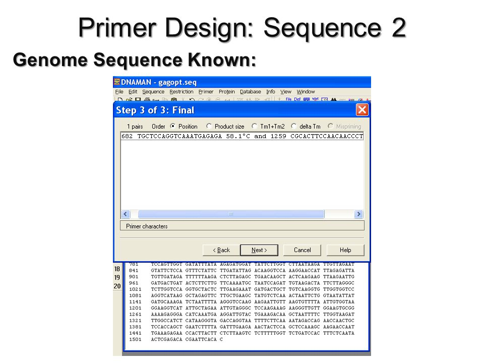 Primer Design: Sequence 2 Genome Sequence Known: