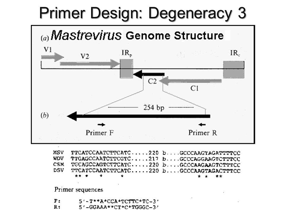 Primer Design: Degeneracy 3