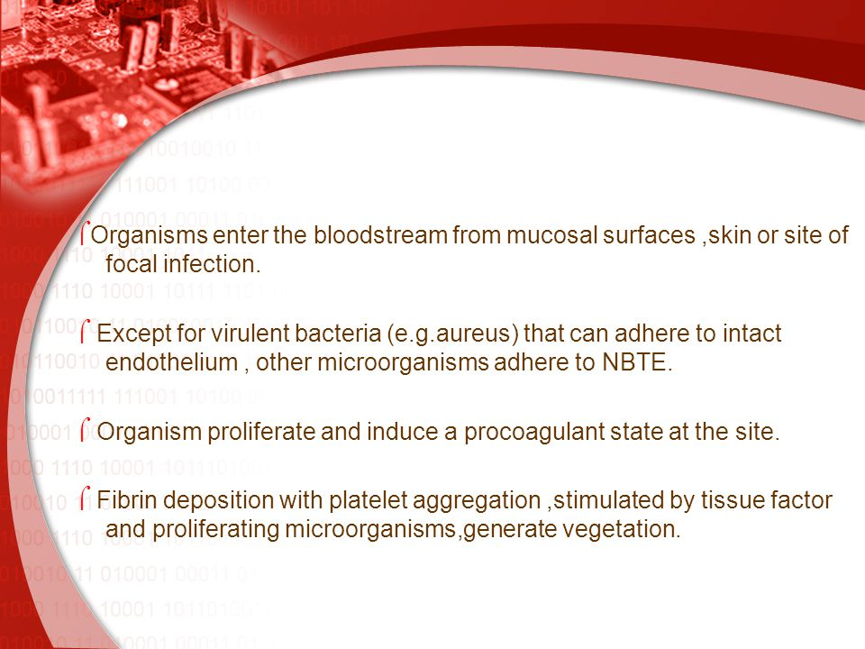  Organisms enter the bloodstream from mucosal surfaces,skin or site of focal infection.  Except for virulent bacteria (e.g.aureus) that can adhere t