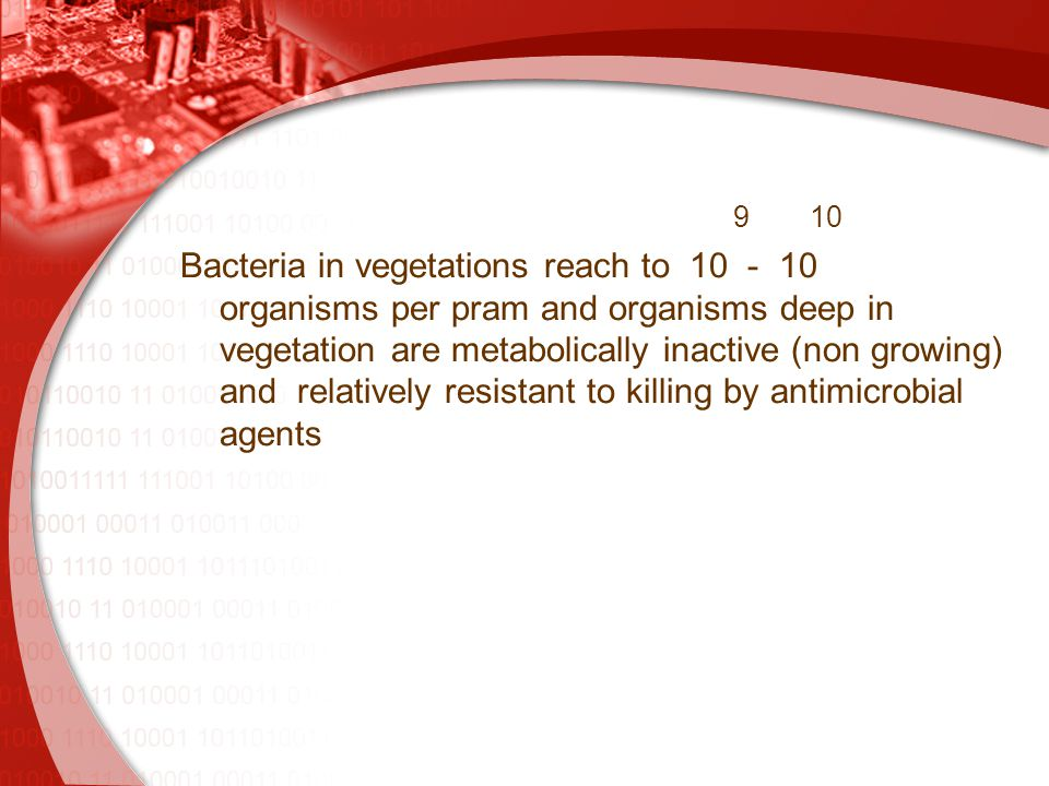 910 Bacteria in vegetations reach to 10 - 10 organisms per pram and organisms deep in vegetation are metabolically inactive (non growing) and relatively resistant to killing by antimicrobial agents