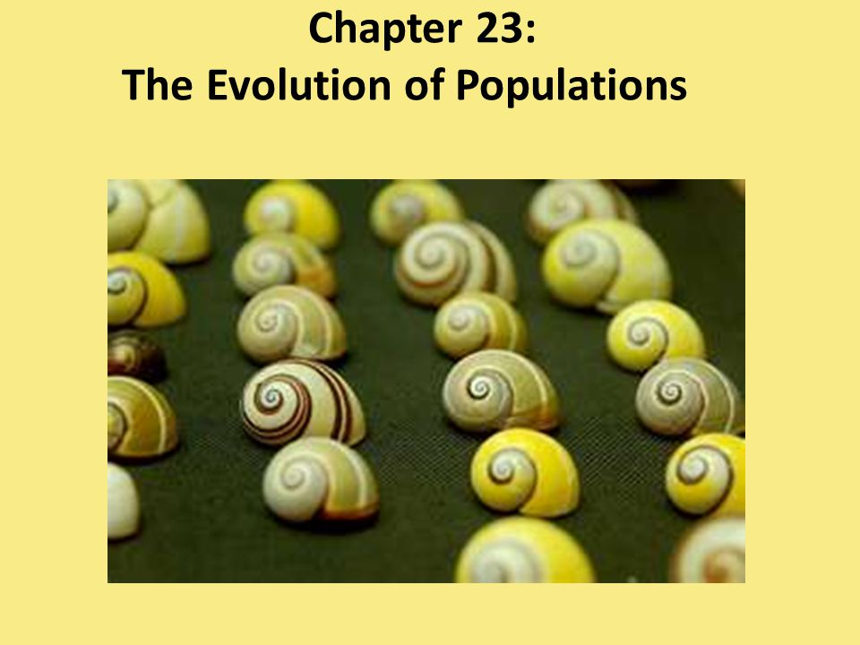 Population Genetics microevolution – change in genetic makeup of a population from generation to generation