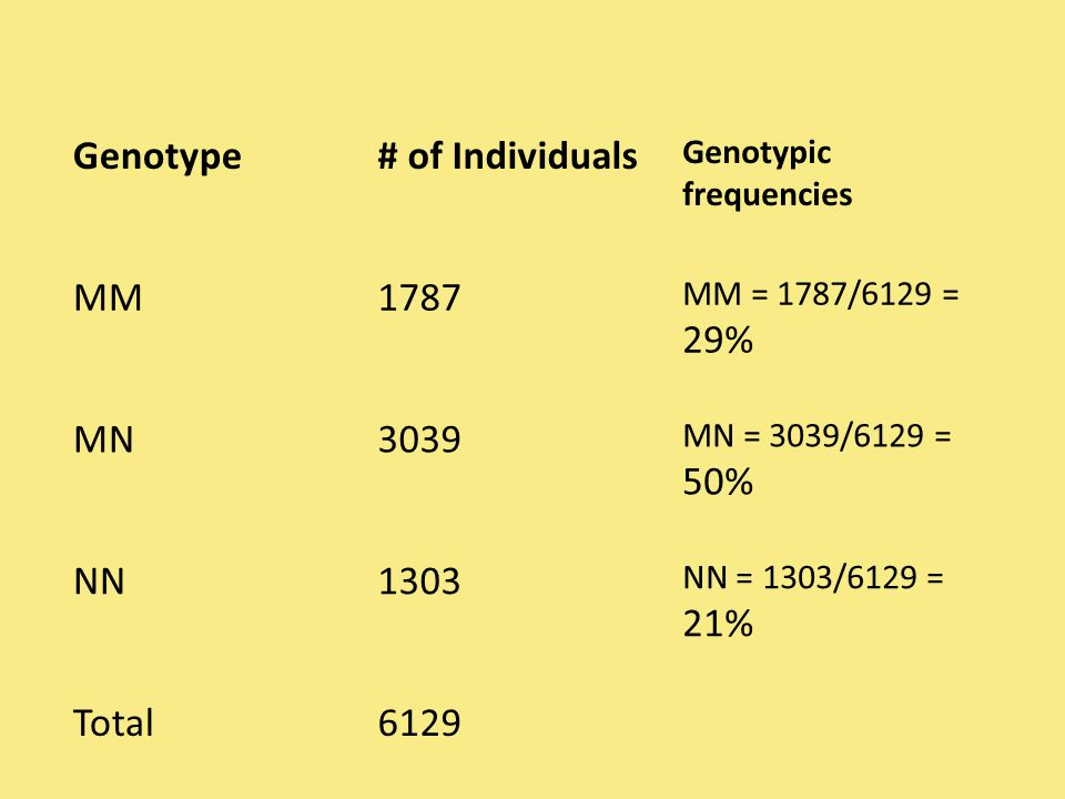 Genotype# of Individuals Genotypic frequencies MM1787 MM = 1787/6129 = 29% MN3039 MN = 3039/6129 = 50% NN1303 NN = 1303/6129 = 21% Total6129
