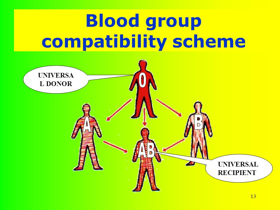 13 Blood group compatibility scheme UNIVERSA L DONOR UNIVERSAL RECIPIENT