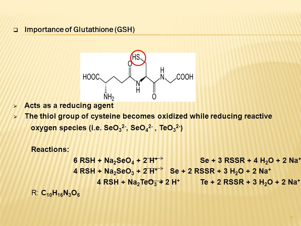  Importance of Glutathione (GSH)  Acts as a reducing agent  The thiol group of cysteine becomes oxidized while reducing reactive oxygen species (i.e.