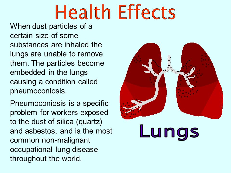 The lung is the major route through which toxic substances enter the body in the workplace.