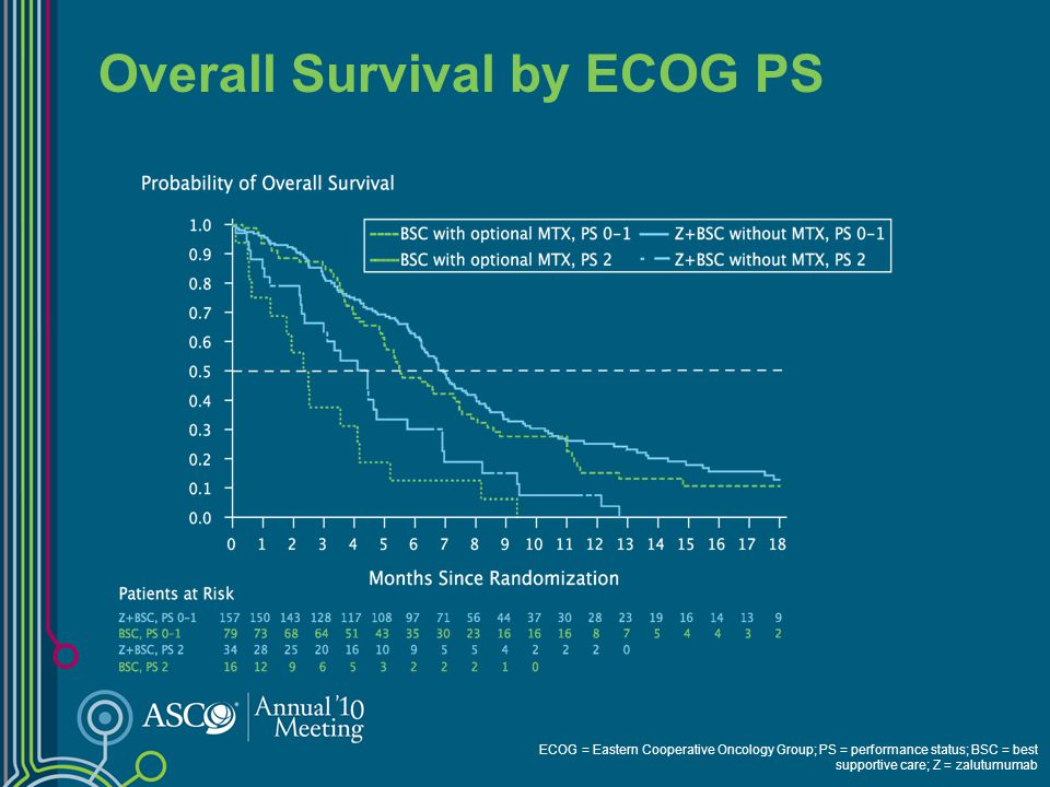 Overall Survival in Subgroups PS = performance status; EGFr = epidermal growth factor receptor; BSC = best supportive care