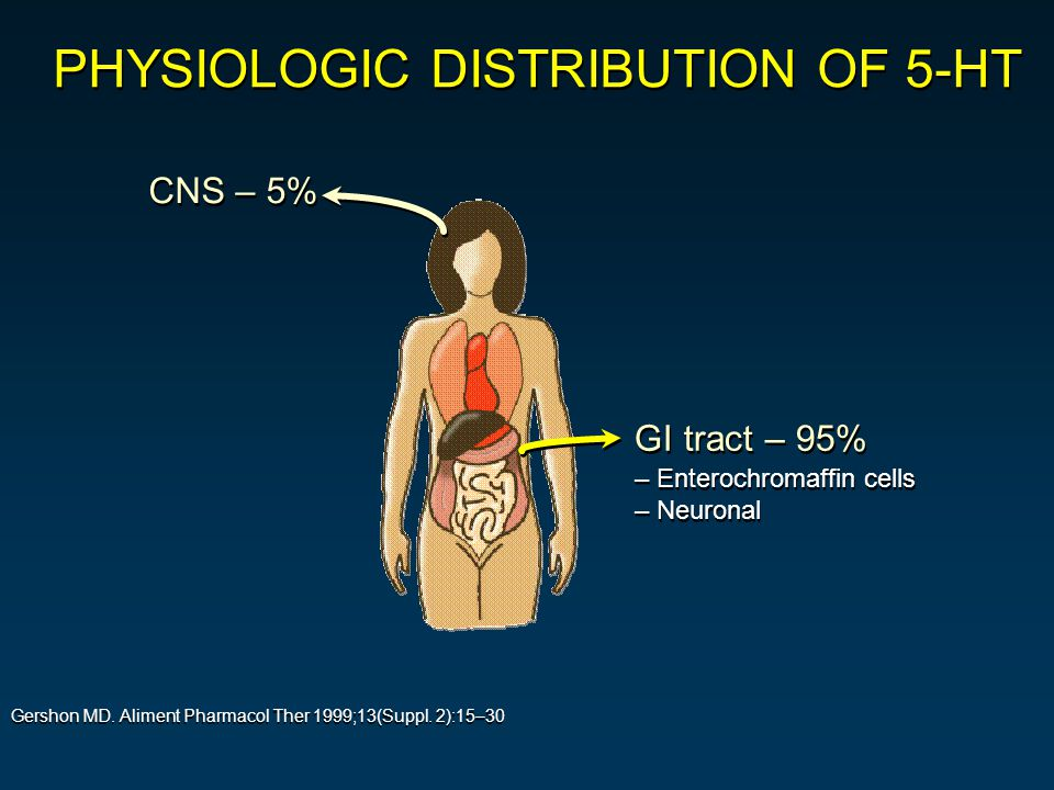 CNS – 5% –Enterochromaffin cells –Neuronal –Enterochromaffin cells –Neuronal GI tract – 95% Gershon MD.
